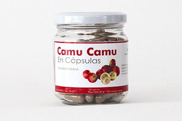 frutosprocesos_camucamu-375x250